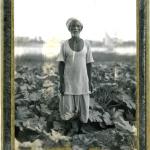 Nilo farmer