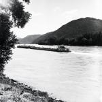 Danubio - Boat