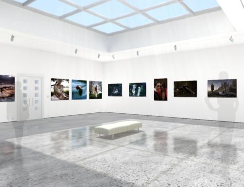 La Fine del Principio | Flux -Zone Gallery | May 2020 | Mexico City